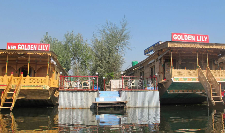 Golden Lily Group Of Houseboat Srinagar